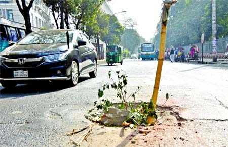 Vehicles ply on a busy road taking risks being cautioned by selling up a bamboo in the middle of a hole in front of Aziz Super Market of Shahbagh area in the capital on Friday.