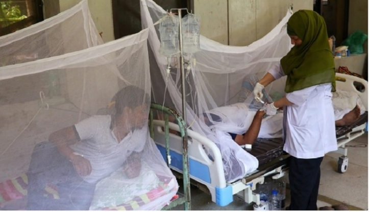 13 new dengue cases reported in 24 hrs