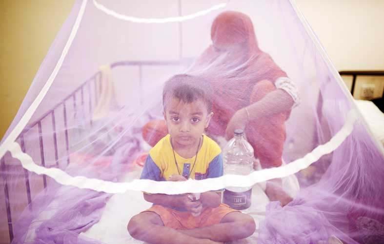 Worsening Dengue: 237 patients hospitalised in 24 hrs