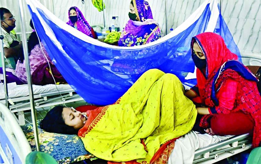234 new Dengue patients hospitalised