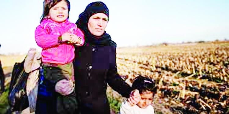 62 children died in NE Syria camp this year: report