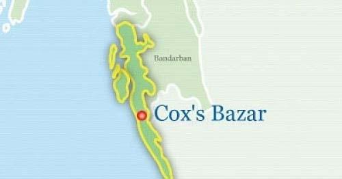 Elephant calf found dead in Cox's Bazar