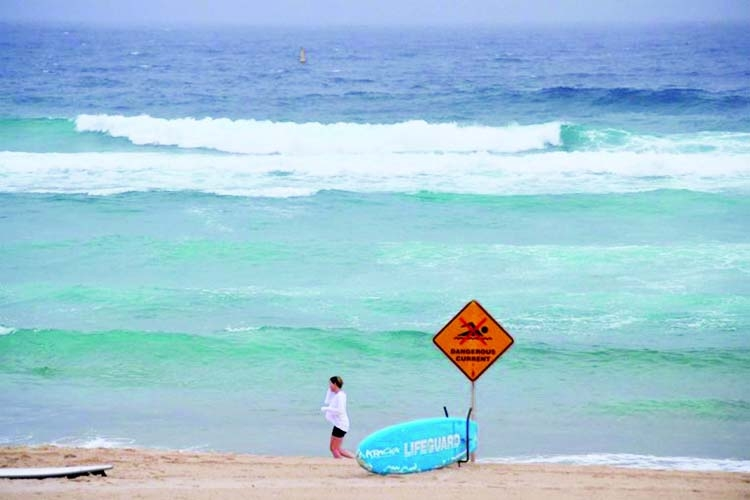 Australian man 'stole' tag from shark