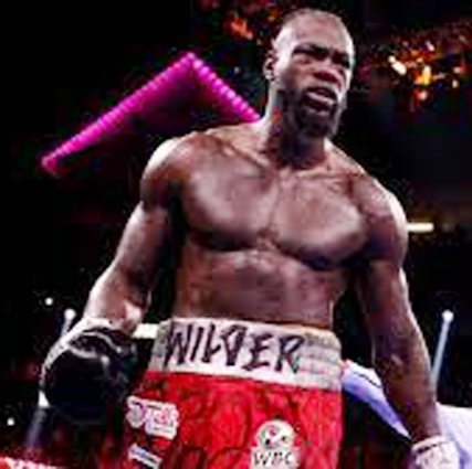 Wilder to undergo   surgery after Fury loss